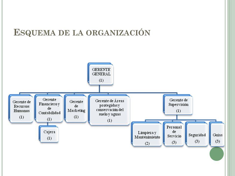 E SQUEMA DE LA ORGANIZACIÓN