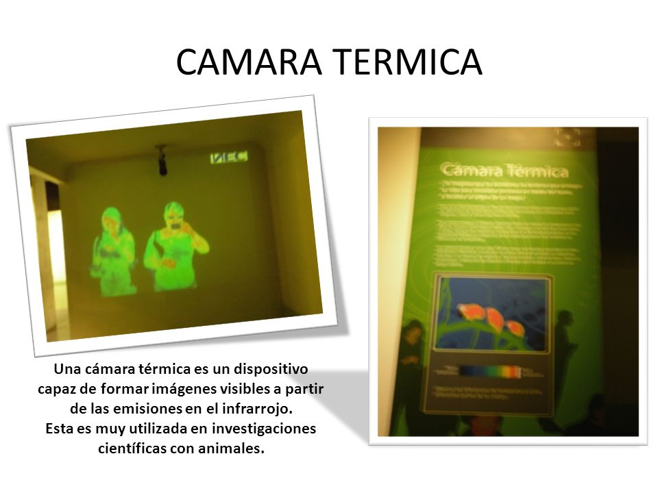 CAMARA TERMICA Una cámara térmica es un dispositivo capaz de formar imágenes visibles a partir de las emisiones en el infrarrojo.
