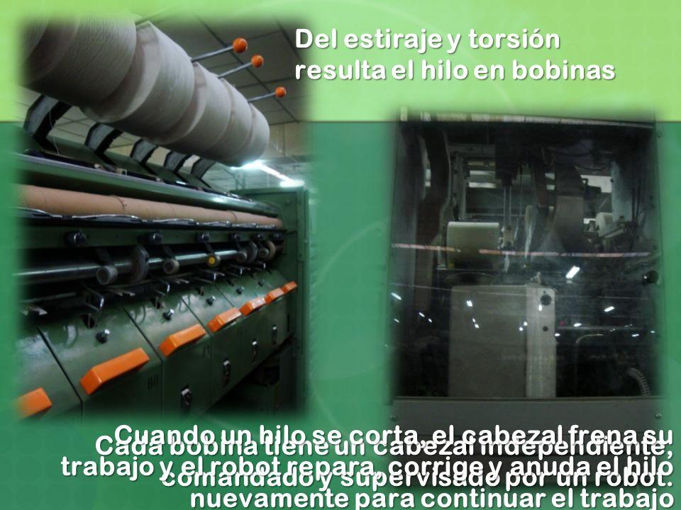 Cada bobina tiene un cabezal independiente, comandado y supervisado por un robot. Del estiraje y torsión resulta el hilo en bobinas Cuando un hilo se