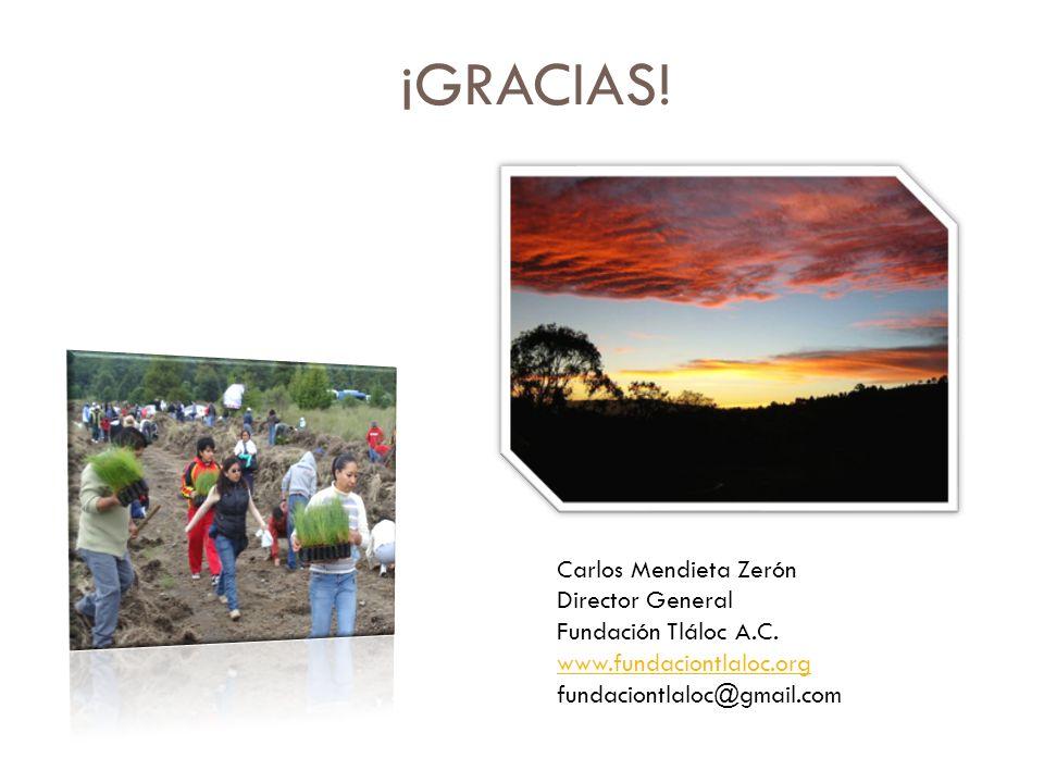 ¡GRACIAS! Carlos Mendieta Zerón Director General Fundación Tláloc A.C. www.fundaciontlaloc.org fundaciontlaloc@gmail.com