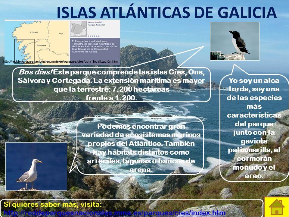 GARAJONAY Éste es el parque de Garajonay. Se extiende por toda la isla canaria de La Gomera con una superficie de… ¡3.948 hectáreas! Yo soy la paloma