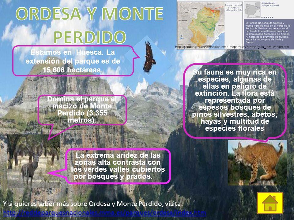MONFRAGÜE Aquí convivo con la nutria, el ciervo y el gato montés. Vivimos en la provincia de Cáceres, en Extremadura. La extensión es de 18.118 hectár
