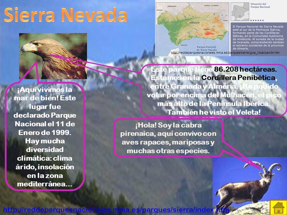 ¡Bienvenidos a los Picos de Europa! Parque Nacional desde el año 1995. Aquí habitan más de 100 especies de aves, además de otros animales como el lobo