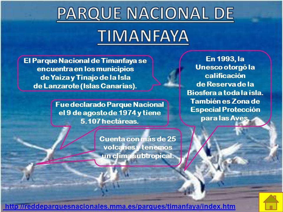 ¡Hola! Soy una abubilla y vivo en las Islas Canarias, en el Parque Nacional del Teide El clima del parque es continental subalpino. Por el día, la fue