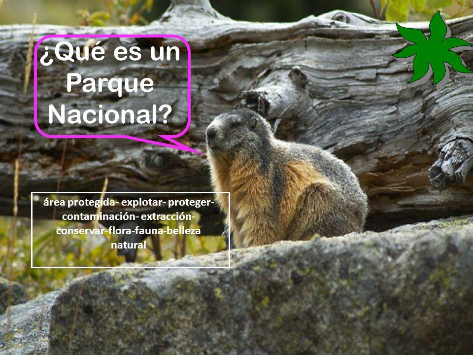 área protegida- explotar- proteger- contaminación- extracción- conservar-flora-fauna-belleza natural ¿Qué es un Parque Nacional?