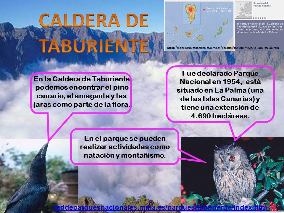 Fue declarado Parque Nacional en 1954, está situado en La Palma (una de las Islas Canarias) y tiene una extensión de 4.690 hectáreas.