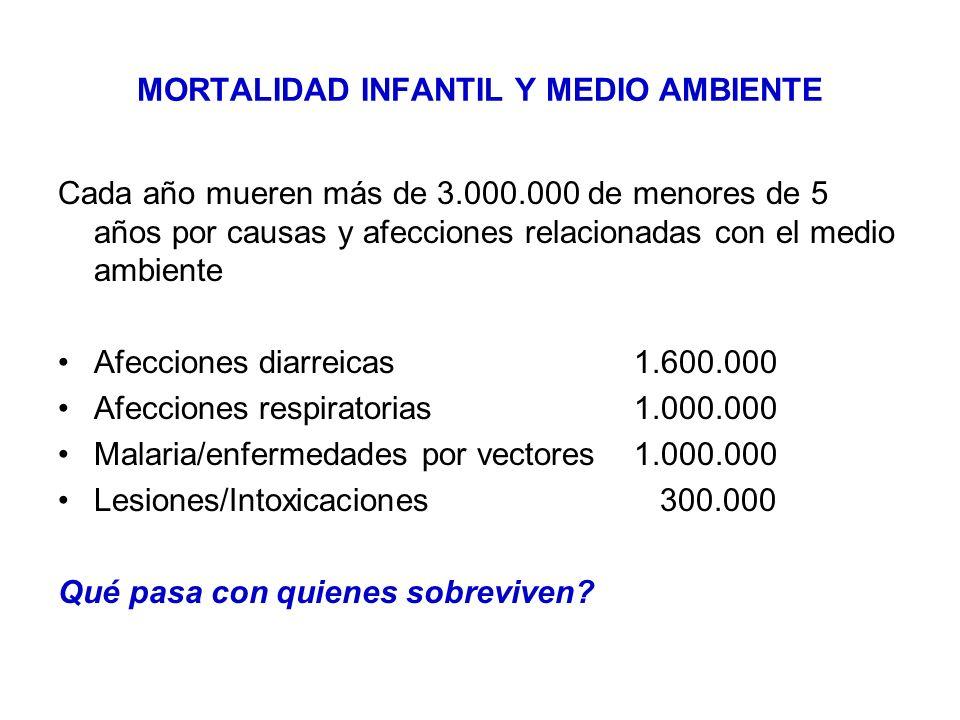 MORTALIDAD INFANTIL Y MEDIO AMBIENTE Cada año mueren más de 3.000.000 de menores de 5 años por causas y afecciones relacionadas con el medio ambiente Afecciones diarreicas 1.600.000 Afecciones respiratorias1.000.000 Malaria/enfermedades por vectores1.000.000 Lesiones/Intoxicaciones 300.000 Qué pasa con quienes sobreviven?