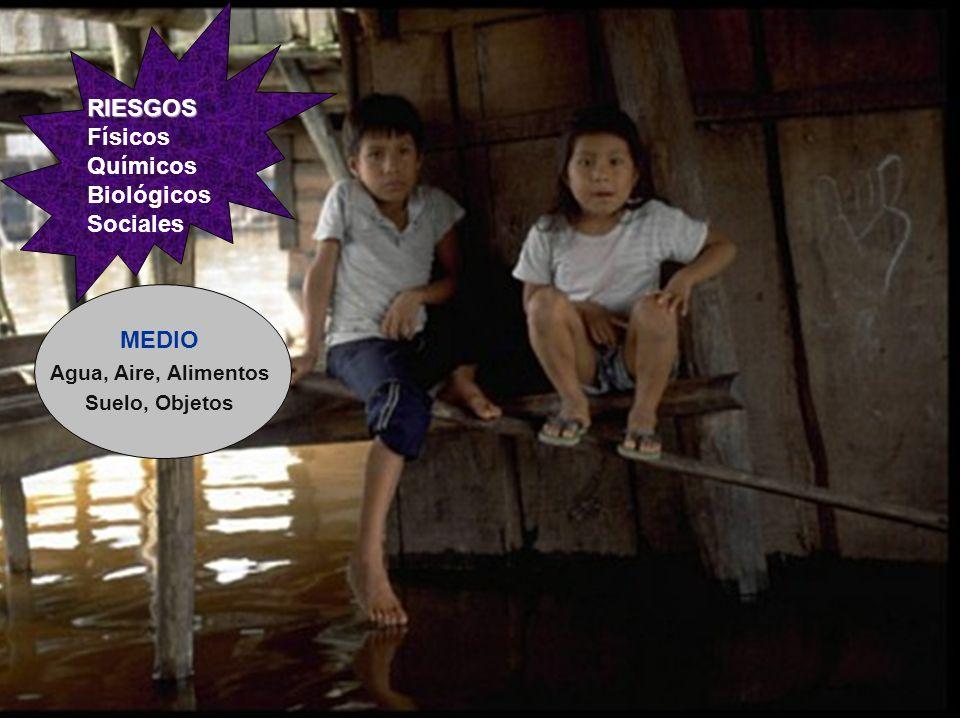 EFECTOS Órganos Sistemas Funciones Desarrollo Supervivencia RIESGOS RIESGOS Físicos Químicos Biológicos Sociales MEDIO Agua, Aire, Alimentos Suelo, Objetos