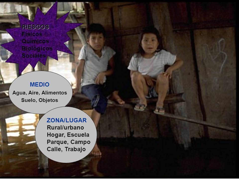 EFECTOS Órganos Sistemas Funciones Desarrollo Supervivencia RIESGOS RIESGOS Físicos Químicos Biológicos Sociales MEDIO Agua, Aire, Alimentos Suelo, Objetos ZONA/LUGAR Rural/urbano Hogar, Escuela Parque, Campo Calle, Trabajo