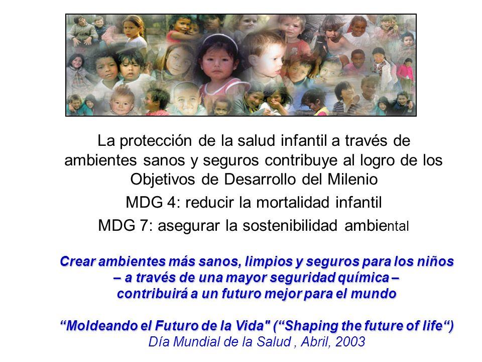 La protección de la salud infantil a través de ambientes sanos y seguros contribuye al logro de los Objetivos de Desarrollo del Milenio MDG 4: reducir la mortalidad infantil MDG 7: asegurar la sostenibilidad ambie ntal Crear ambientes más sanos, limpios y seguros para los niños – a través de una mayor seguridad química – contribuirá a un futuro mejor para el mundo Moldeando el Futuro de la Vida (Shaping the future of life) Día Mundial de la Salud, Abril, 2003
