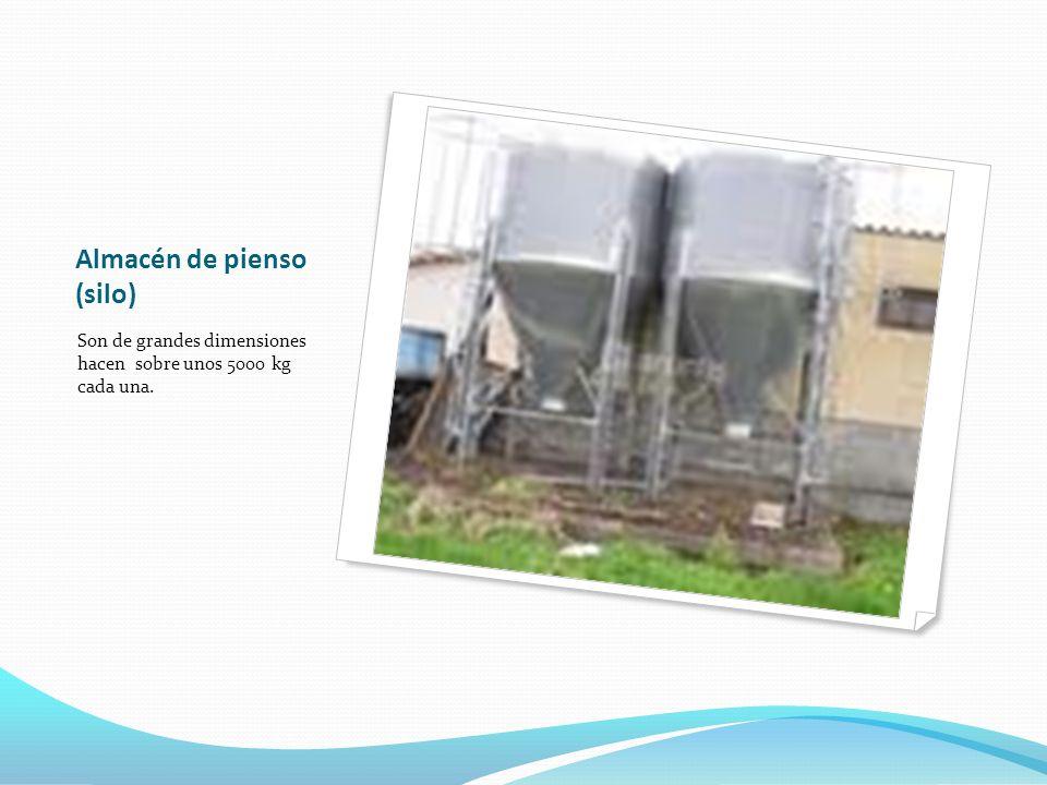 Almacén de pienso (silo) Son de grandes dimensiones hacen sobre unos 5000 kg cada una.