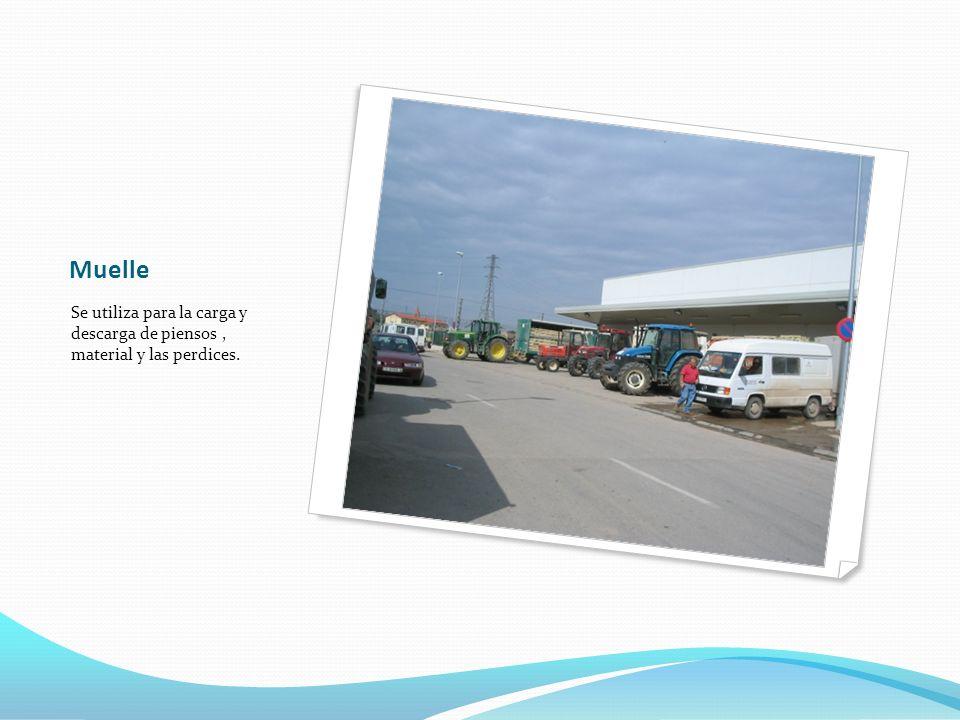 Muelle Se utiliza para la carga y descarga de piensos, material y las perdices.