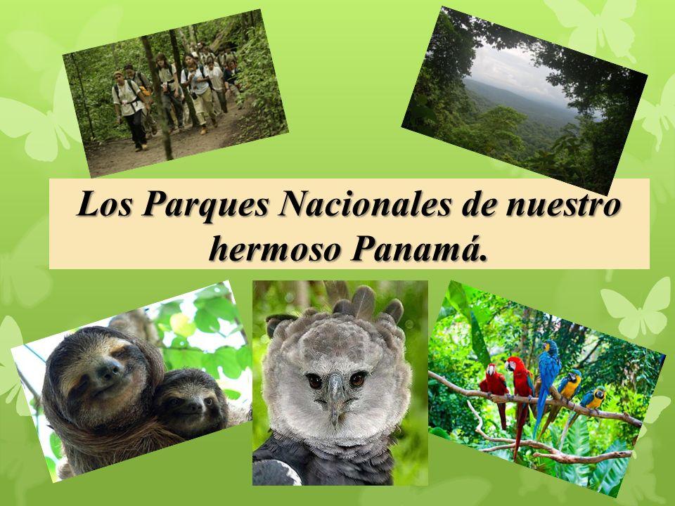 Los Parques Nacionales de nuestro hermoso Panamá.