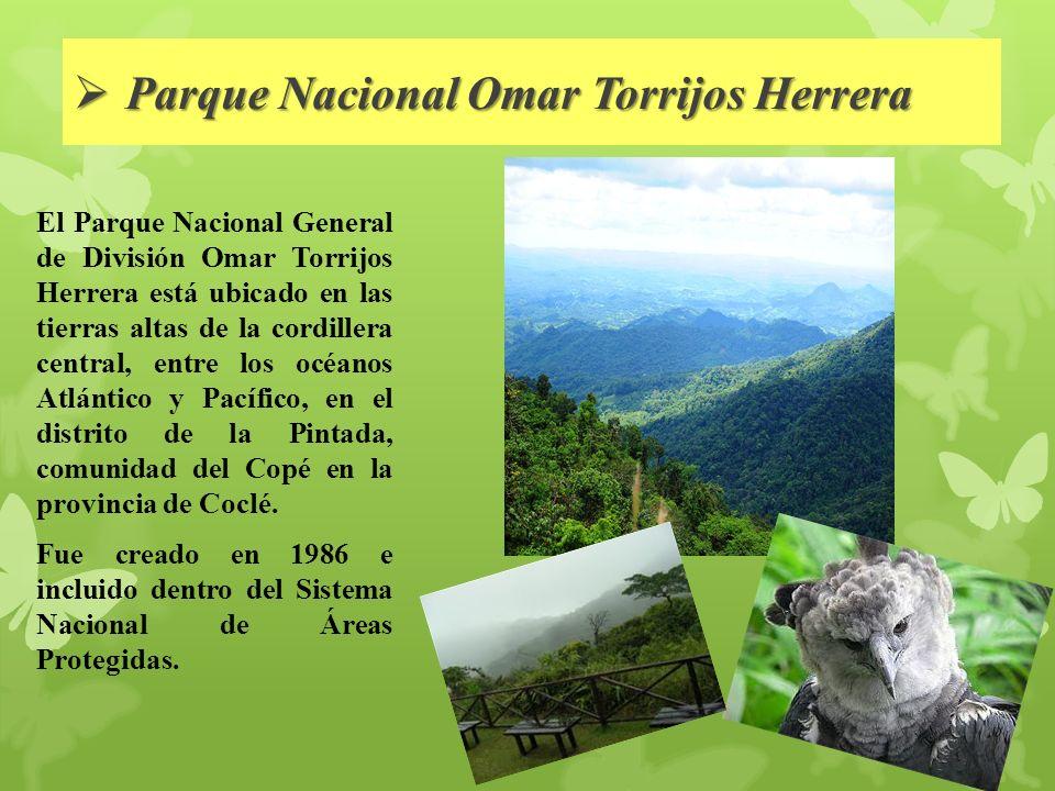 Parque Nacional Omar Torrijos Herrera Parque Nacional Omar Torrijos Herrera El Parque Nacional General de División Omar Torrijos Herrera está ubicado en las tierras altas de la cordillera central, entre los océanos Atlántico y Pacífico, en el distrito de la Pintada, comunidad del Copé en la provincia de Coclé.