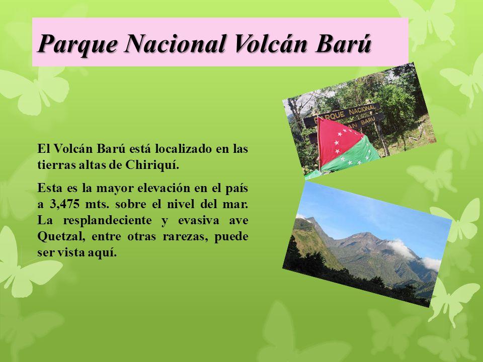 Parque Nacional Volcán Barú El Volcán Barú está localizado en las tierras altas de Chiriquí.