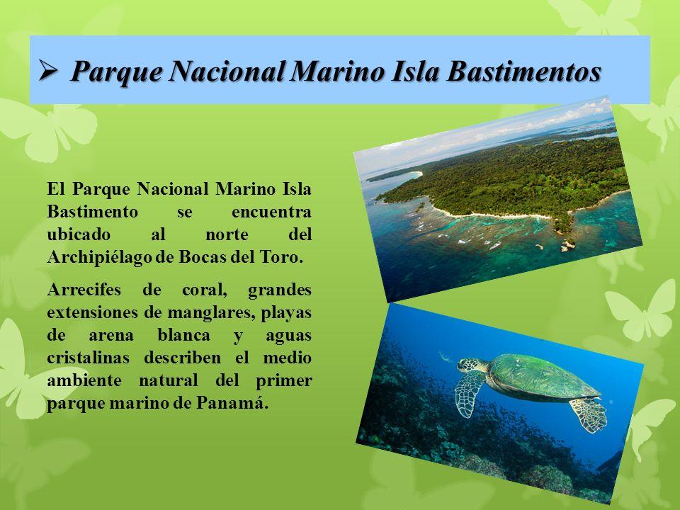 Parque Nacional Marino Isla Bastimentos Parque Nacional Marino Isla Bastimentos El Parque Nacional Marino Isla Bastimento se encuentra ubicado al norte del Archipiélago de Bocas del Toro.