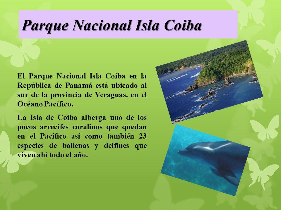 Parque Nacional Isla Coiba El Parque Nacional Isla Coiba en la República de Panamá está ubicado al sur de la provincia de Veraguas, en el Océano Pacífico.