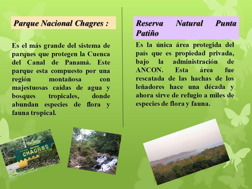 Es el más grande del sistema de parques que protegen la Cuenca del Canal de Panamá.