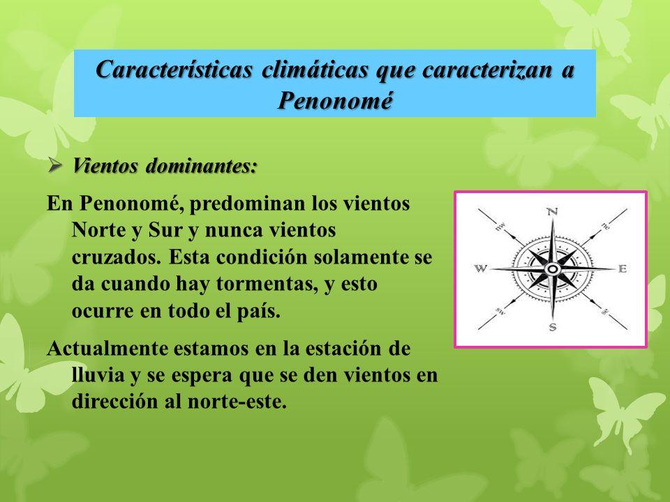 Vientos dominantes: Vientos dominantes: En Penonomé, predominan los vientos Norte y Sur y nunca vientos cruzados.
