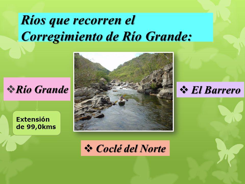 Ríos que recorren el Corregimiento de Río Grande: Río Grande Río Grande El Barrero El Barrero Coclé del Norte Coclé del Norte Extensión de 99,0kms