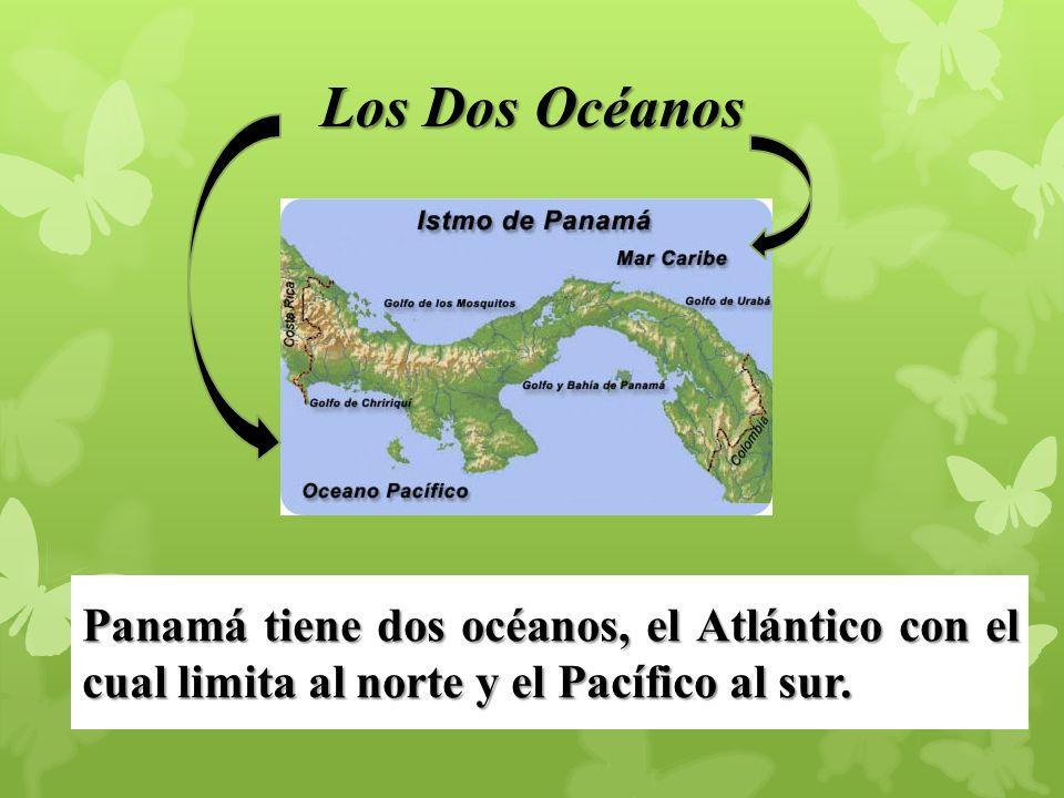 Reserva Hídrica Cerro Guacamaya LOCALIZACION: Corregimientos de Cañaveral y el Potrero, distritos de Penonomé y La Pintada.
