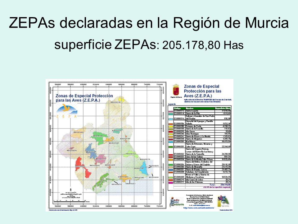 ZEPAs: Zonas de Especial Protección para las Aves, establecidas por la Comunidad Europea en la Directiva comunitaria 79/409/CEE, relativa a la protecc