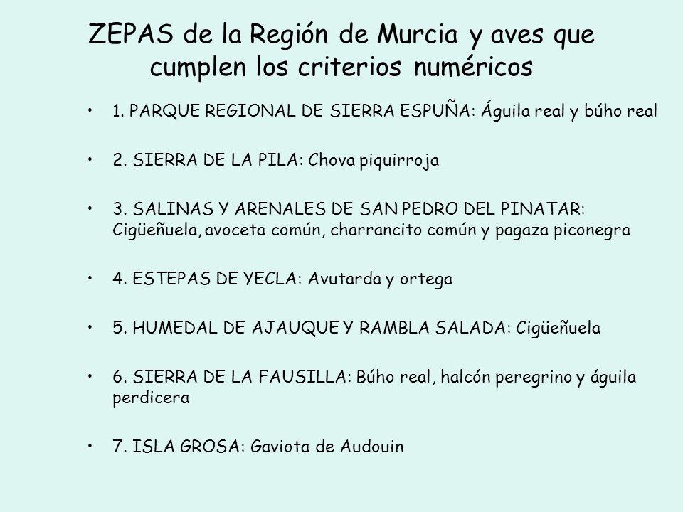 ZEPAs declaradas en la Región de Murcia superficie ZEPAs : 205.178,80 Has