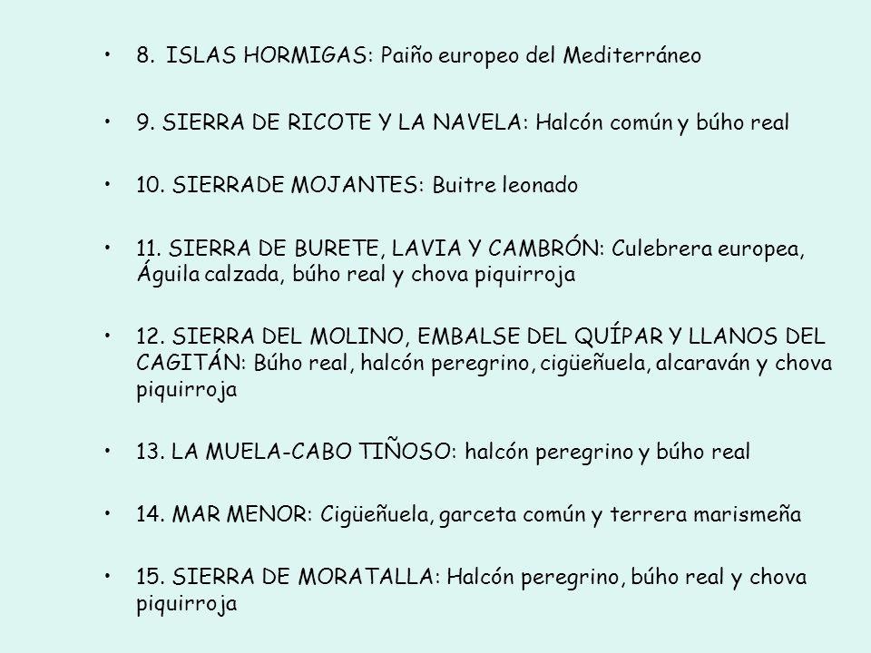 ZEPAS de la Región de Murcia y aves que cumplen los criterios numéricos 1. PARQUE REGIONAL DE SIERRA ESPUÑA: Águila real y búho real 2. SIERRA DE LA P