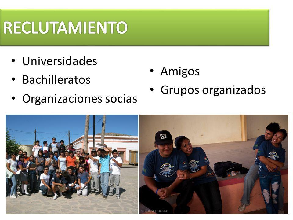 Universidades Bachilleratos Organizaciones socias Amigos Grupos organizados