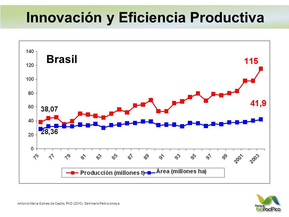 Antonio Maria Gomes de Castro, PhD (2010); Seminario Pedro Amaya Brasil Innovación y Eficiencia Productiva