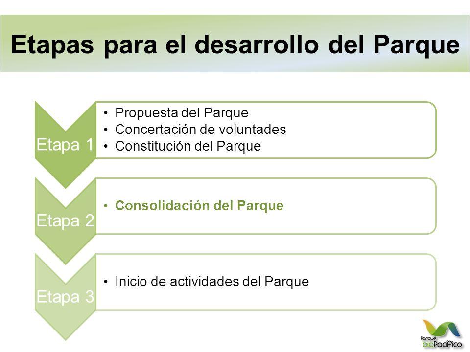 Etapas para el desarrollo del Parque Etapa 1 Propuesta del Parque Concertación de voluntades Constitución del Parque Etapa 2 Consolidación del Parque Etapa 3 Inicio de actividades del Parque