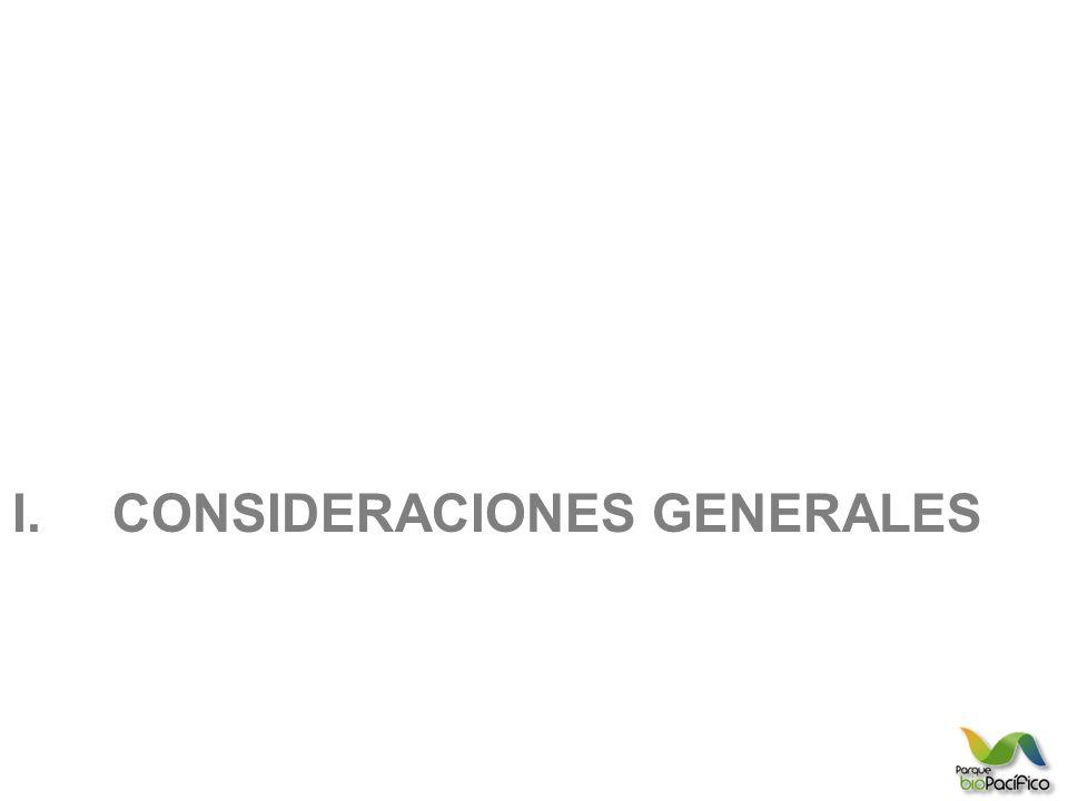 I.CONSIDERACIONES GENERALES