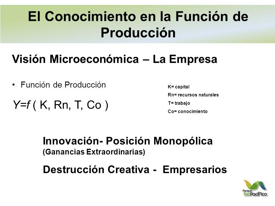 Visión Microeconómica – La Empresa Función de Producción Y=f ( K, Rn, T, Co ) K= capital Rn= recursos naturales T= trabajo Co= conocimiento Innovación- Posición Monopólica (Ganancias Extraordinarias) Destrucción Creativa - Empresarios El Conocimiento en la Función de Producción