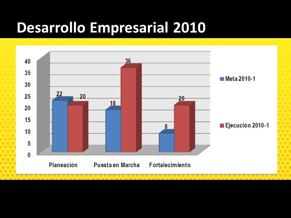 Desarrollo Empresarial 2010