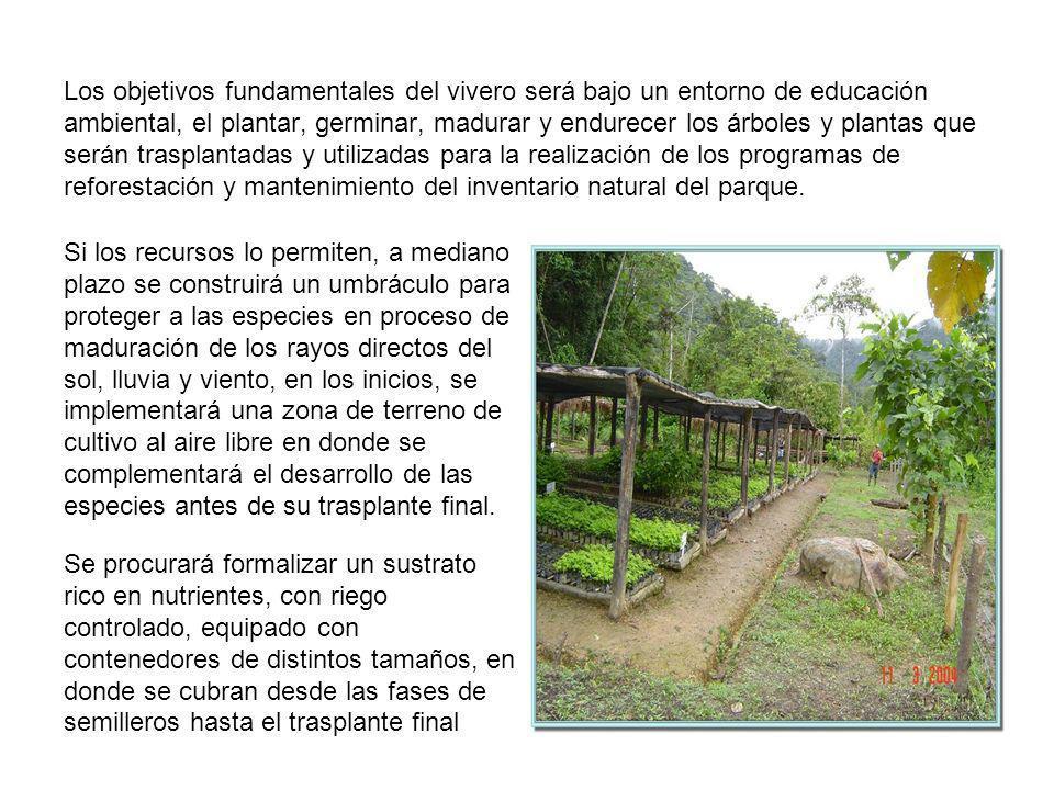 Los objetivos fundamentales del vivero será bajo un entorno de educación ambiental, el plantar, germinar, madurar y endurecer los árboles y plantas qu