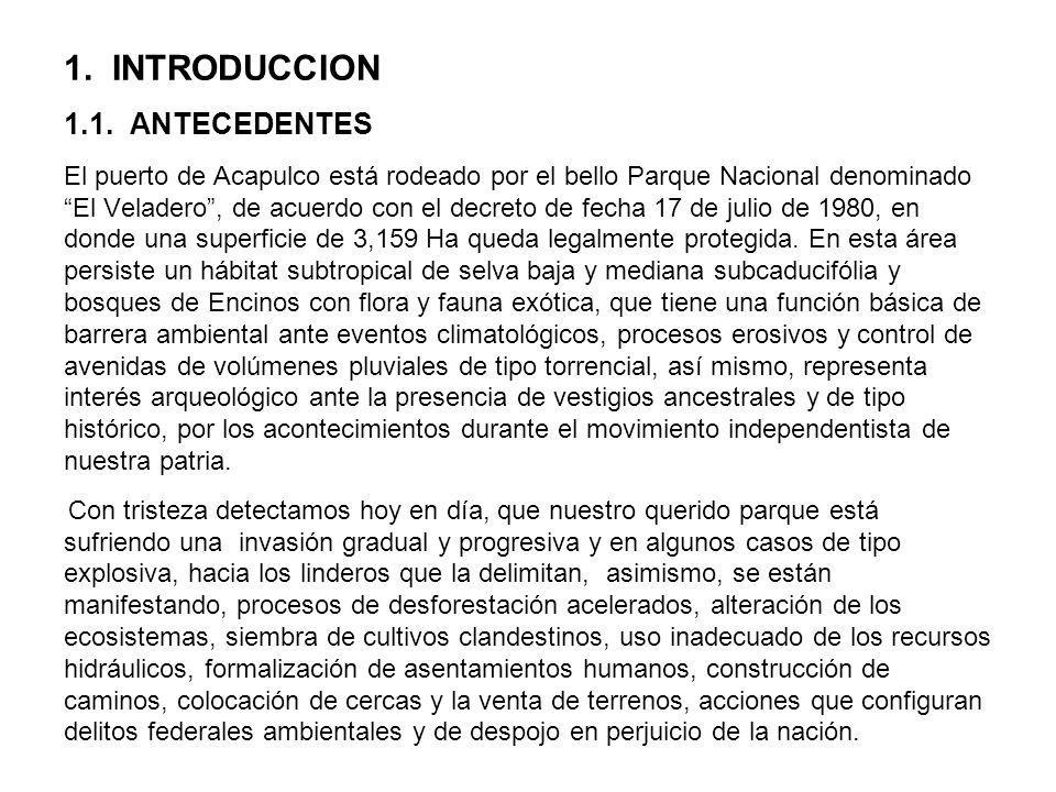 6.19.PROGRAMA DE SERVICIOS Y ATRACTIVOS DEL PARQUE 6.19.1.