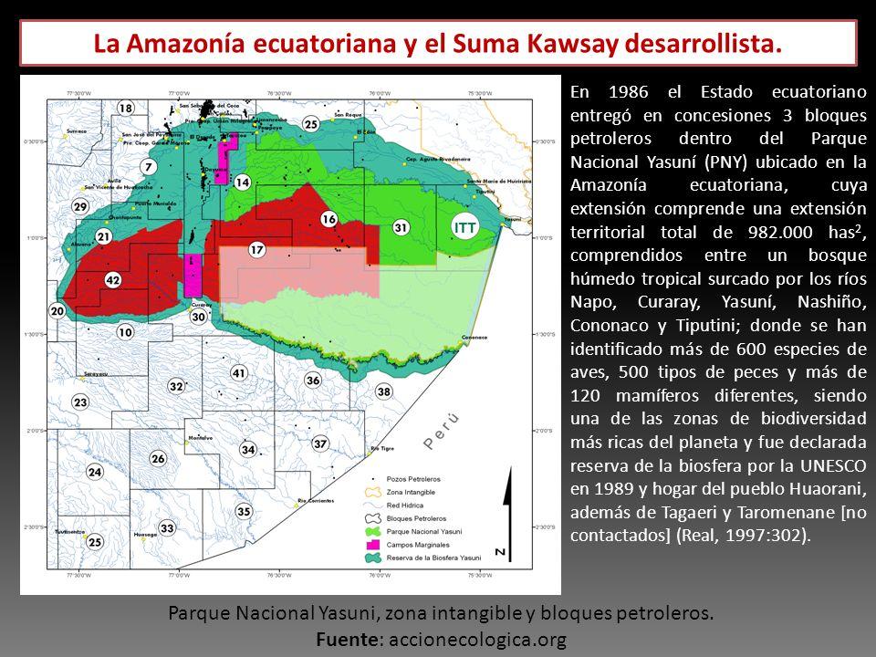 Parque Nacional Yasuni, zona intangible y bloques petroleros. Fuente: accionecologica.org En 1986 el Estado ecuatoriano entregó en concesiones 3 bloqu