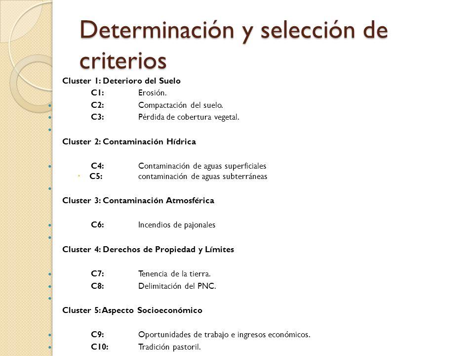 Determinación y selección de criterios Cluster 1: Deterioro del Suelo C1:Erosión. C2:Compactación del suelo. C3:Pérdida de cobertura vegetal. Cluster