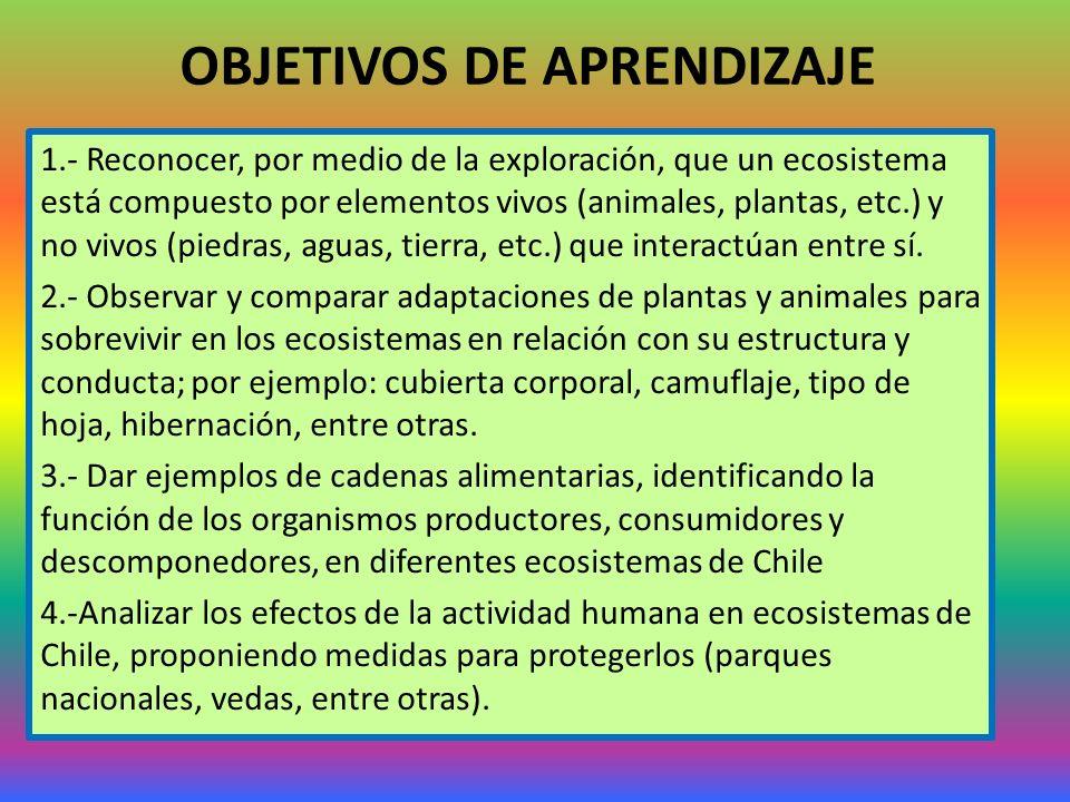 OBJETIVOS DE APRENDIZAJE 1.- Reconocer, por medio de la exploración, que un ecosistema está compuesto por elementos vivos (animales, plantas, etc.) y