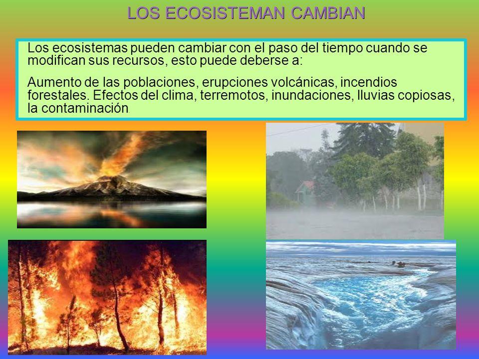 LOS ECOSISTEMAN CAMBIAN Los ecosistemas pueden cambiar con el paso del tiempo cuando se modifican sus recursos, esto puede deberse a: Aumento de las poblaciones, erupciones volcánicas, incendios forestales.