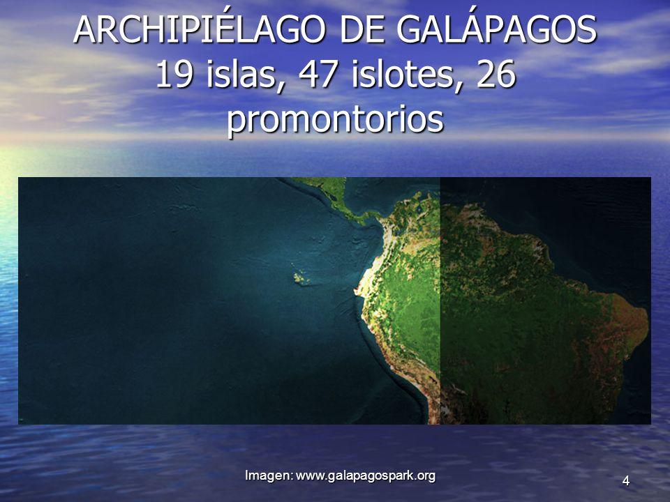 ARCHIPIÉLAGO DE GALÁPAGOS 19 islas, 47 islotes, 26 promontorios Imagen: www.galapagospark.org 4
