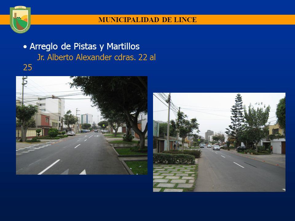 MUNICIPALIDAD DE LINCE Arreglo de Pistas y Martillos Jr. Alberto Alexander cdras. 22 al 25