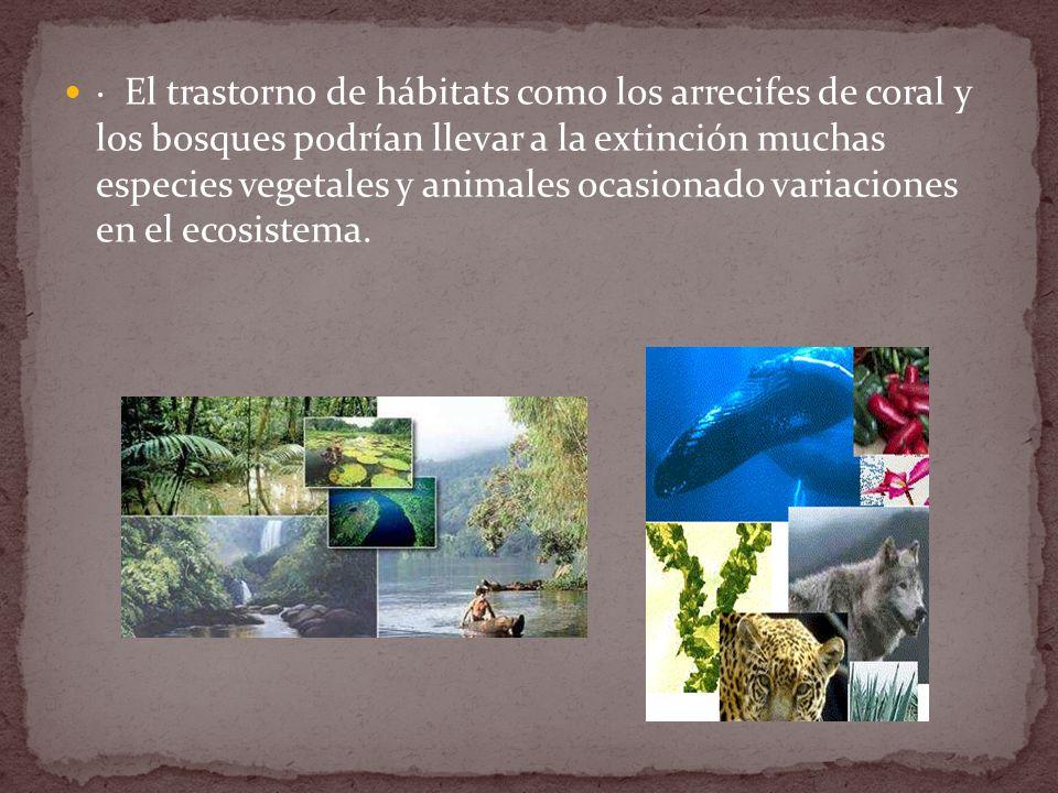 · El trastorno de hábitats como los arrecifes de coral y los bosques podrían llevar a la extinción muchas especies vegetales y animales ocasionado variaciones en el ecosistema.