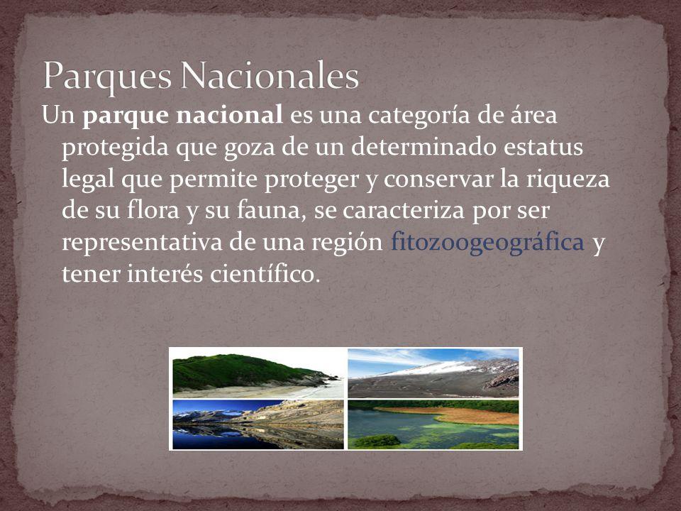 Un parque nacional es una categoría de área protegida que goza de un determinado estatus legal que permite proteger y conservar la riqueza de su flora y su fauna, se caracteriza por ser representativa de una región fitozoogeográfica y tener interés científico.