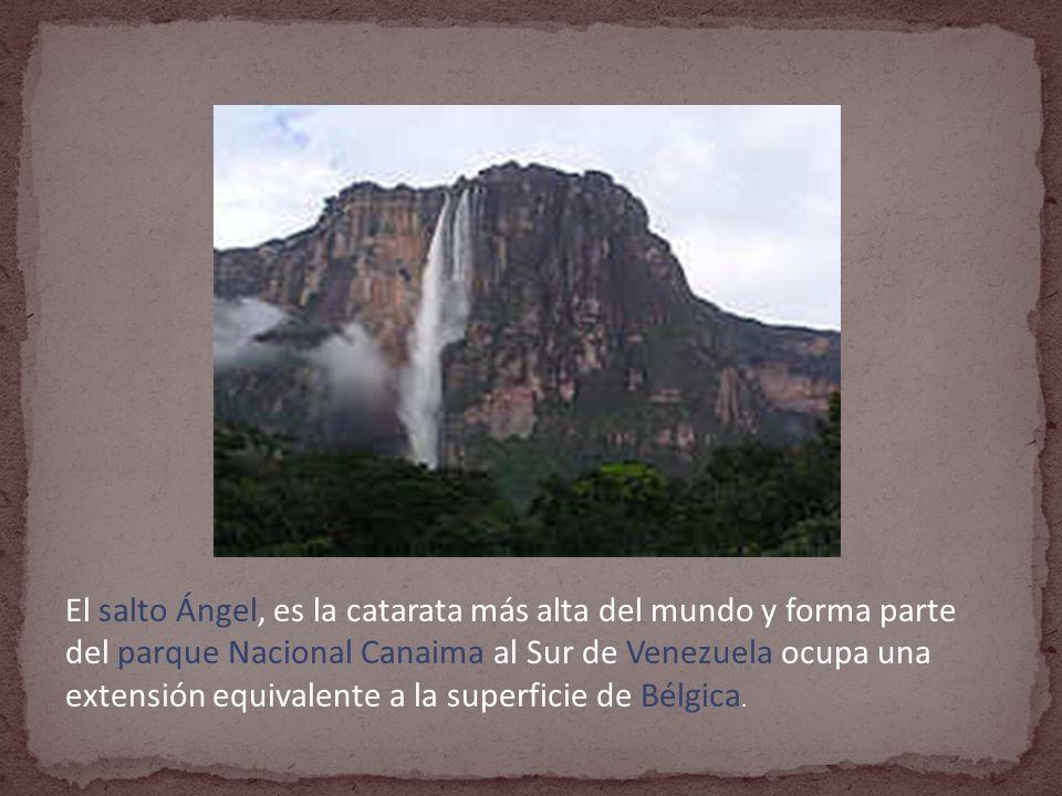 El salto Ángel, es la catarata más alta del mundo y forma parte del parque Nacional Canaima al Sur de Venezuela ocupa una extensión equivalente a la superficie de Bélgica.