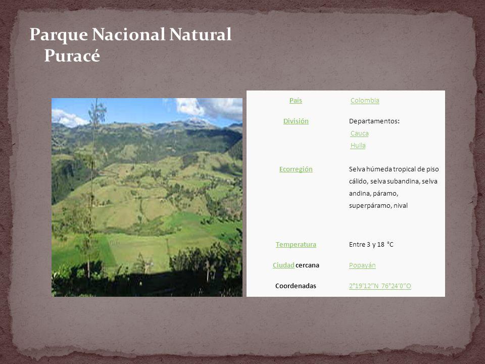 Parque Nacional Natural Puracé País Colombia División Departamentos: Cauca HuilaCaucaHuila Ecorregión Selva húmeda tropical de piso cálido, selva subandina, selva andina, páramo, superpáramo, nival TemperaturaEntre 3 y 18 °C CiudadCiudad cercanaPopayán Coordenadas2°1912N 76°240O