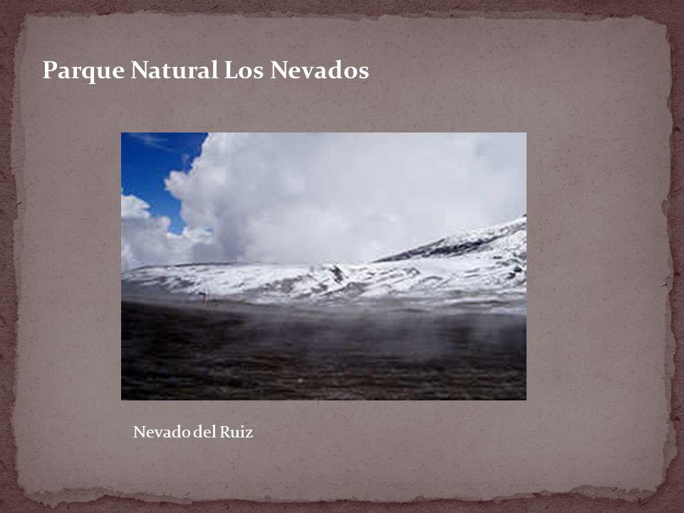 Parque Natural Los Nevados Nevado del Ruiz