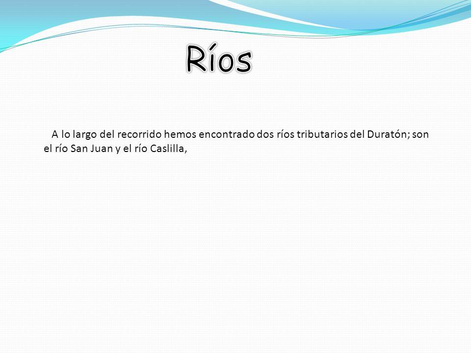 A lo largo del recorrido hemos encontrado dos ríos tributarios del Duratón; son el río San Juan y el río Caslilla,