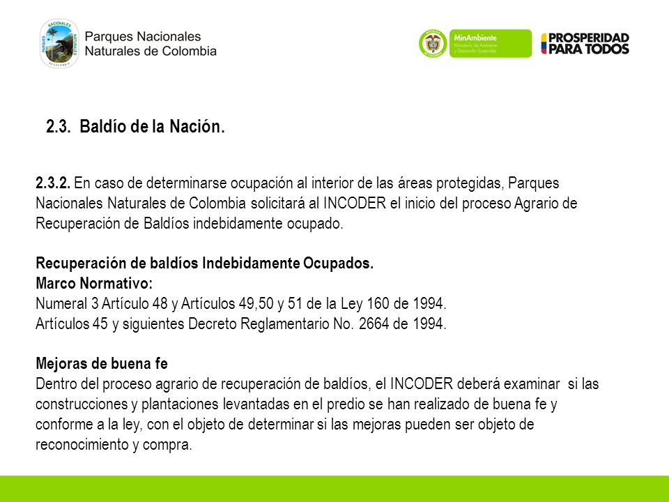 2.3. Baldío de la Nación. 2.3.2. En caso de determinarse ocupación al interior de las áreas protegidas, Parques Nacionales Naturales de Colombia solic