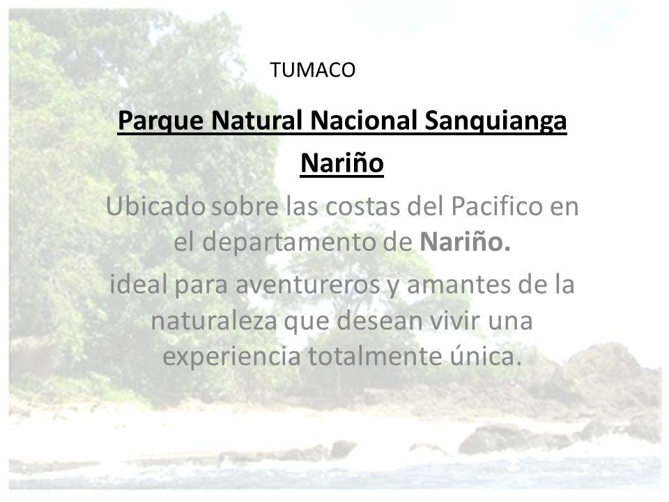 TUMACO Parque Natural Nacional Sanquianga Nariño Ubicado sobre las costas del Pacifico en el departamento de Nariño. ideal para aventureros y amantes